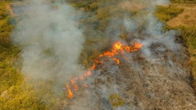fire_forest_fields_aerial_view_istock-961452364_0.jpg